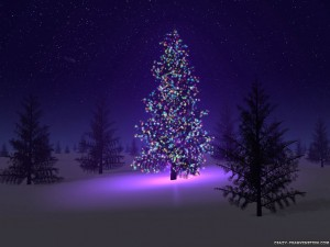 beautiful-christmas-tree[1]
